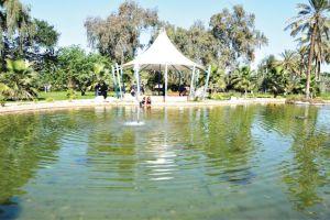 «الأومليت» وشاي «الكرك» والطبيعة الخضراء تستقطب الآلاف بحديقة البديع ...
