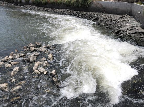 صورة أرشيفية لخليج توبلي ومياه الخليج ملوثة لضيق المنافذ وعدم تجدد المياه