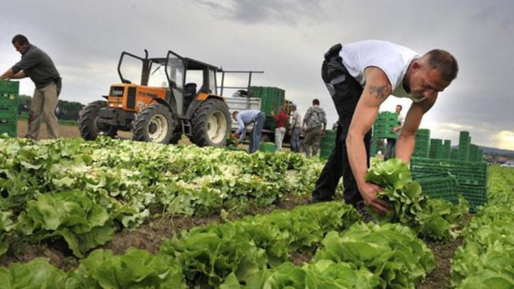 Partnervermittlung landwirte schweiz