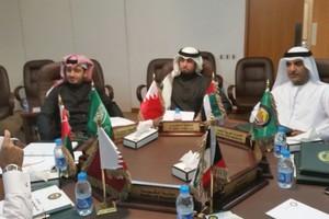 لجنة استراتيجية تطوير العمل الرياضي الخليجي تضع الرؤية والرسالة والأهداف