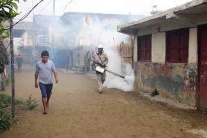 تعبئة في أميركا اللاتينية للقضاء  على البعوض المسبب لفيروس «زيكا»