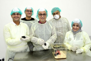 «جامعة الخليج»: إنتاج أول حيوان مخبري مُعدَّل وراثياً في إنجاز علمي لا سابق له في الجامعات العربية