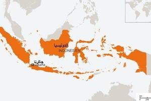 السجن لإندونيسي روج دعاية لتنظيم