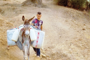 كيف يواجه ريفيّو المغرب أزمة العطش؟