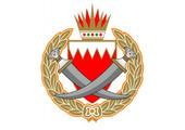 «الداخلية»: استشهاد شرطي وإصابة اثنين إثر إلقاء قنابل حارقة على دورية أمنية في كرباباد