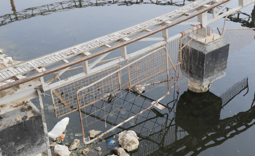 مياه بحيرة الحديقة المائية تعاني من تعفن الأوساخ فيها