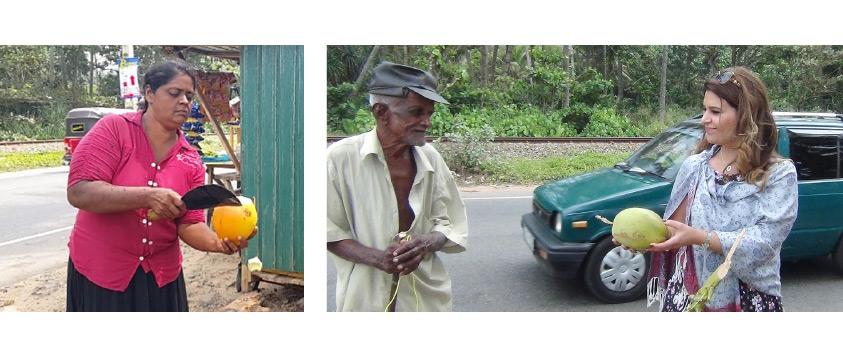 «الوسط» في لقاء مع باعة جوز الهند على امتداد سواحل الجنوب السريلانكي