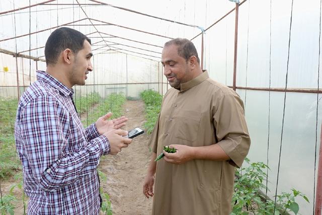 المزارع سرحان: في كل عام تتقلص المساحة الزراعية في العكر بسبب توقف الدعم