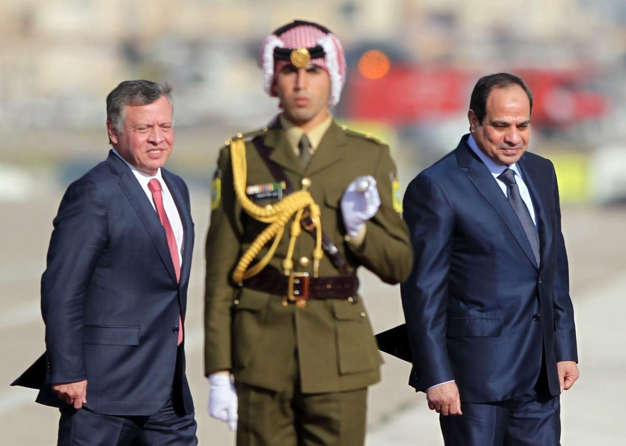 السيسي والعاهل الأردني يبحثان التنسيق للوصول إلى حل لإقامةدولةفلسطينية — الاناضول
