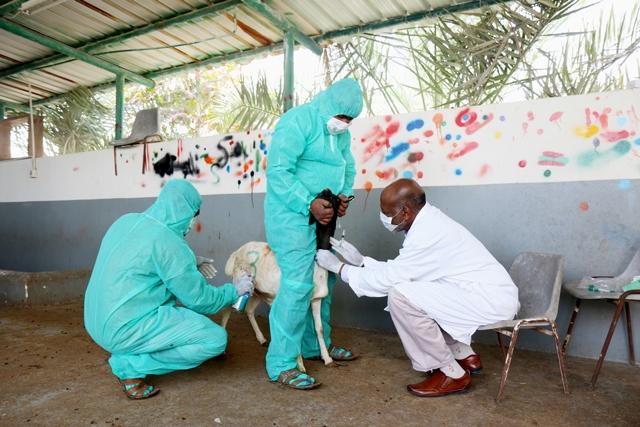 البحرين حصلت على امتياز إنشاء منطقة حرة نتيجة التزامها ببرنامج التطعيم ضد الأمراض - محمد المخرق