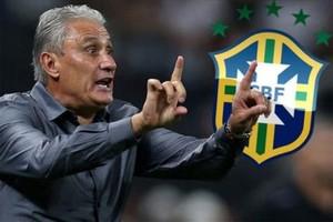 بالفيديو... ليوناردو تيتي مدرب البرازيل.. 8 مباريات = 8 انتصارات