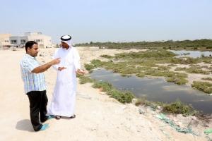 بالفيديو...البعوض يغزو عدة مناطق بحرينية