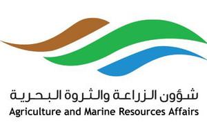 البحرين : 'الزراعة' توفر 3 مسالخ استعداداً لرمضان... وتحذر من الذبح خارجها