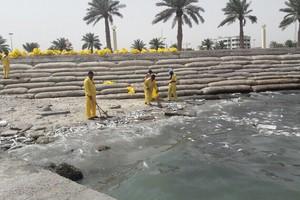 وزير كويتي: نفوق بعض الأسماك بالكويت آخر أسبوعين هو ضمن المعدل المعتاد